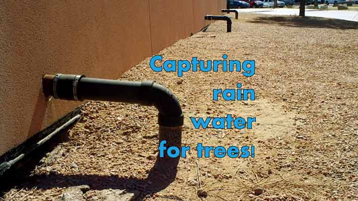 Capturing Rain Water Image