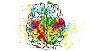 Behavioral Health Services (BHS)
